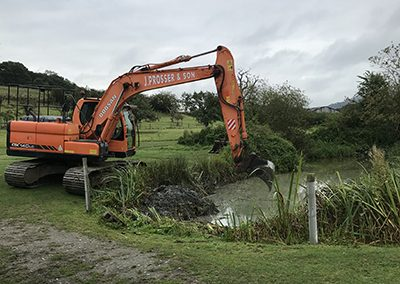 Digger in pond